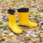 Yellow rubber boots — Stock Photo