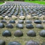Stones — Stock Photo #64673325
