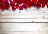 Rose Petals Border — Stock Photo