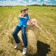 Young couple sitting on a hay stack — Stock Photo #53404621