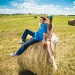Young couple sitting on a hay stack — Stock Photo #53404631