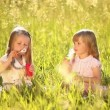 Two little girls in the meadow — Stock Video #76852607