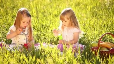 Two sisters blow bubbles in the meadow — Stock Video