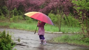Girl with an umbrella walking — Stock Video