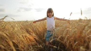 Girl walking on wheat field — Stock Video