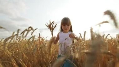 Girl walking through wheat field — Stock Video