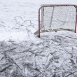 Pond Hockey Net and Snow — Stock Photo #61898401