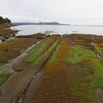 Gabriola Island Coast — Stock Photo #75967317