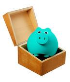 Piggy Bank in Box — Stock Photo