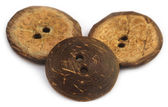 Round buttons made of coconut shell — Stock Photo