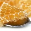 Honey combs — Stock Photo #56207075