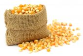Corns in sack bag — Stock Photo