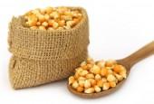 Corns in sack bag — Fotografia Stock