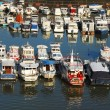 Постер, плакат: Various parked boats in row