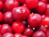 Cranberries closeup — Stock Photo
