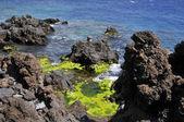 Skalnaté pobřeží San Juan na Tenerife — Stock fotografie