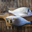 Fish — Stock Photo #59541471