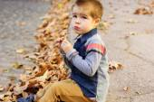 Little toddler boy in autumn park — Stock Photo