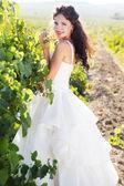 Nevěsta na vinici, na podzim — Stock fotografie