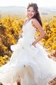 Bride in a vineyard, autumn — Stock Photo