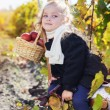 Adorable little girl with apples, autumn time — Stock Photo #55619045