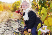 Adorable little girl with apples, autumn time — Stock Photo