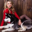 Young girl wearing red dress with her husky dog — Stock Photo #62099653
