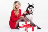 Girl wearing dress with gifts and her husky dog  — Stock Photo
