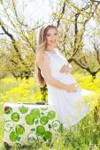 Happy pregnant woman on nature — ストック写真