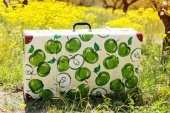 Suitcase in green grass on natural background — Stock Photo