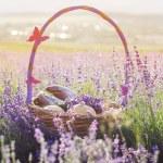 Basket with sweet-stuff in purple lavender flowers — Stock Photo #76706079