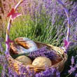 Closeup picture of basket with sweets in purple lavender flowers — Stock Photo #76706373