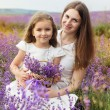 Child girl with mother in lavender field are holding basket — Stock Photo #76802381