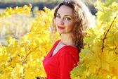 Девушка с вьющимися блестящие волосы в желтый виноград виноградник — Стоковое фото