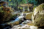 Magic garden in Koh Samui — Stock Photo
