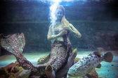 Thai Creatures statue from legend of Mysterious forest underwater in aquarium — Stock Photo