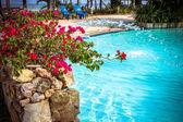 Swimming pool at luxury villa, Koh Samui — Stockfoto