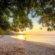 Beautiful sunset over the tropical beach — Stock Photo #59104099