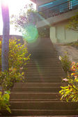 Stone stairs on sunlight in the park — Stock Photo