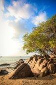 The island Phangan in Thailand — Stock Photo