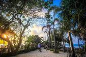 在热带小岛岸的夏天日落景色 — 图库照片