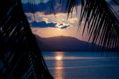 Beautiful sunset. View through palm leaf and on peaceful mountains. — Stock Photo