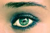Green Eye Makeup. Beautiful Eyes Make-up. Macro — Stok fotoğraf