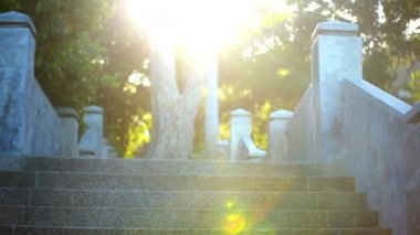 Video ascending stairs and a large tree with sunlight in sky. Lense flare effect. HD — Stock Video