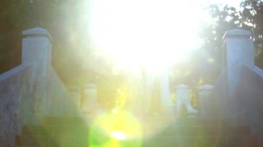 Video ascending stairs and a large tree with sunlight in sky. Lense flare effect. HD — Vídeo stock