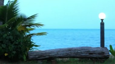 Branches of palm trees sway in the breeze on cloudy day at sea and lantern. Video — ストックビデオ