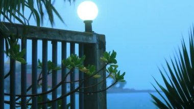 Branches of palm trees sway in the breeze on cloudy day at sea and lantern. Video — Stock Video
