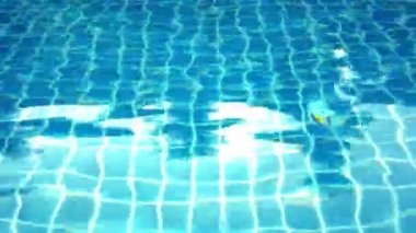 Clear blue swimming pool close up in tropical island at resort. Video shift motion — Stock Video