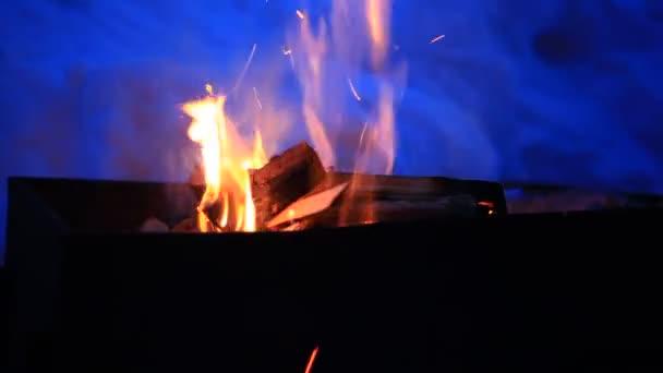видео горения огня как в камине