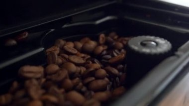 Freshly roasted coffee beans in a Coffee roaster. Slowmotion — Stock Video